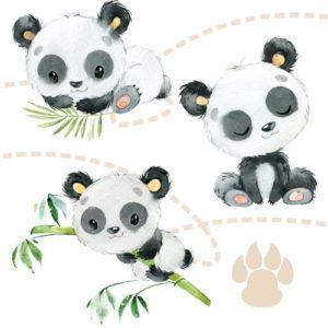 Sonho de Panda